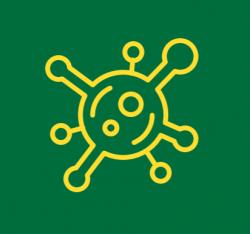 virus ico